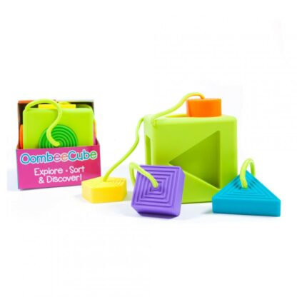 Fat Brain- Cube with Oombee shapes