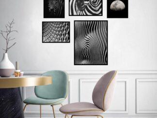 Set of 5 decorative paintings Zebra BW