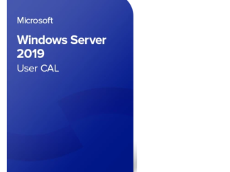 Microsoft Windows 2019 Server License, English, 5 CAL User